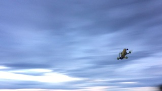 ideafly-grasshopper-f210-14