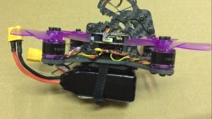 lizard95-33