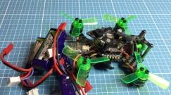 mantis-85-19